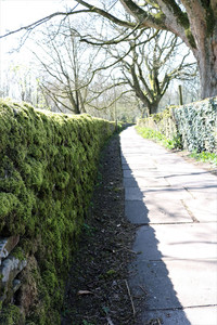 Dry stone wall path