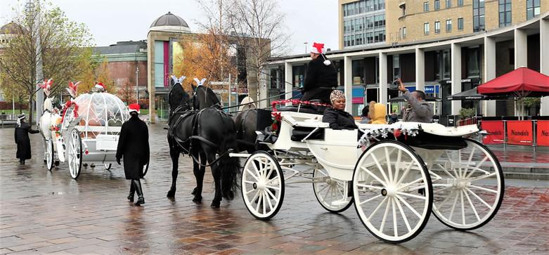 Horse drawn carriage City Park Bradford 2019