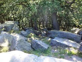 shipley glen rocks on hill.jpg