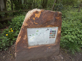 Buck woods Thackley route map