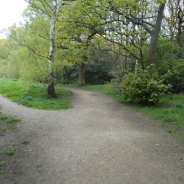 Path junction buck wood thackley