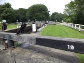 Lock gate beam