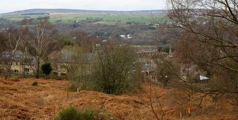 View from Ilkley Tarn.jpg
