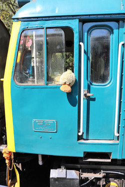Duck looking out of cab window