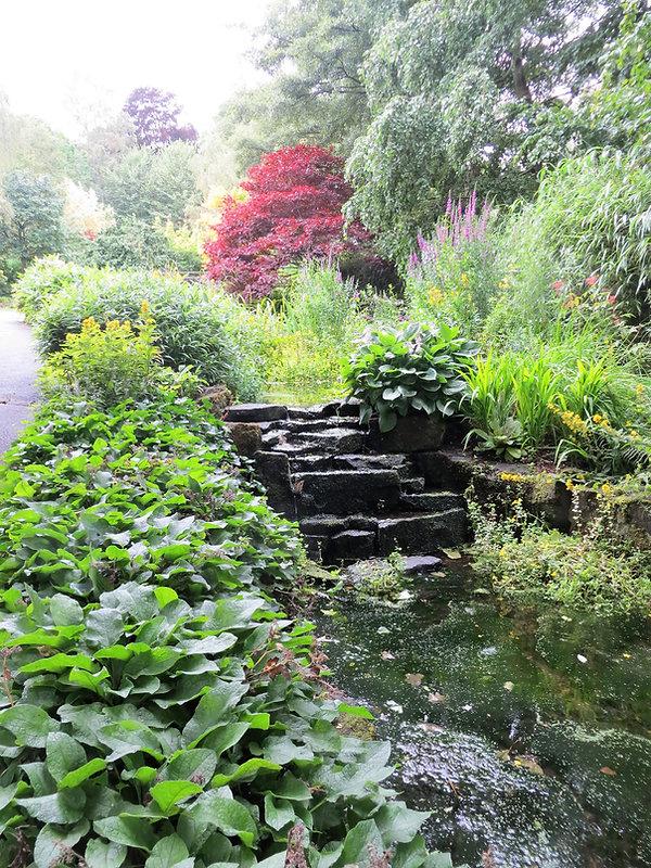 stream running over rocks lister park bradford