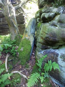 shipley glen leaning rock.jpg
