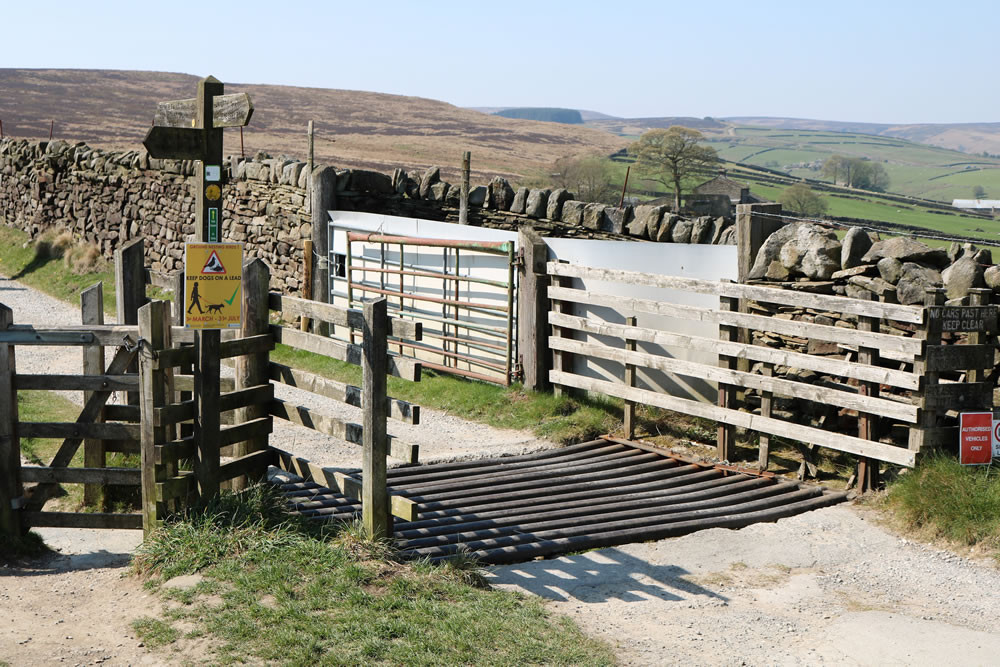Cattle grid with Kissing gate