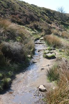 Muddy path down to Bronte bridge and falls