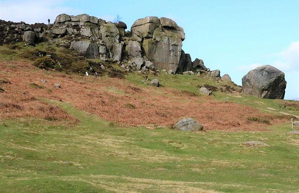 cow n calf rocks.jpg