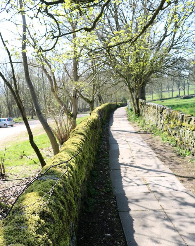 wall with moss Haworth