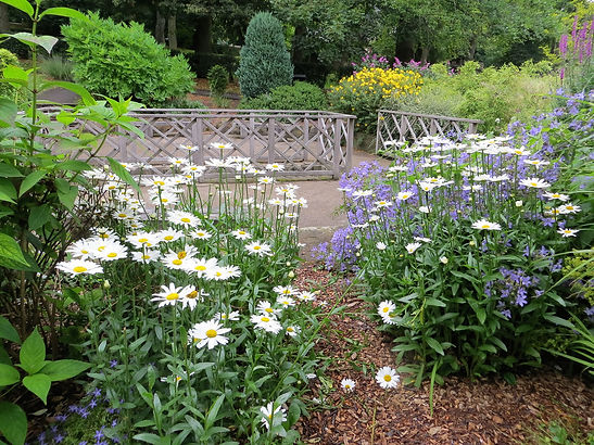 Botanical garden Lister park Bradford UK