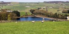 Lower Laithe Reservoir.jpg