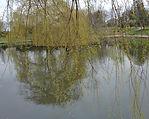 Pond Peel park Bradford West Yorkshire