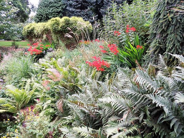ferns sensory garden lister park