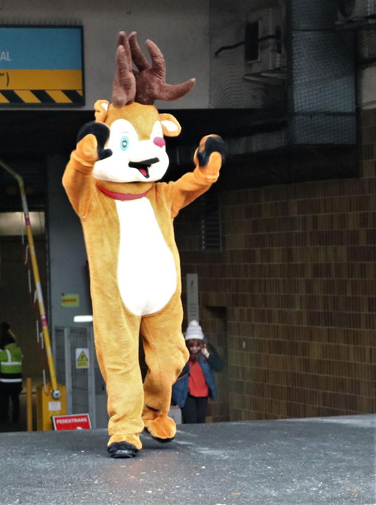 Rudolph reindeer parade Bradford 2019