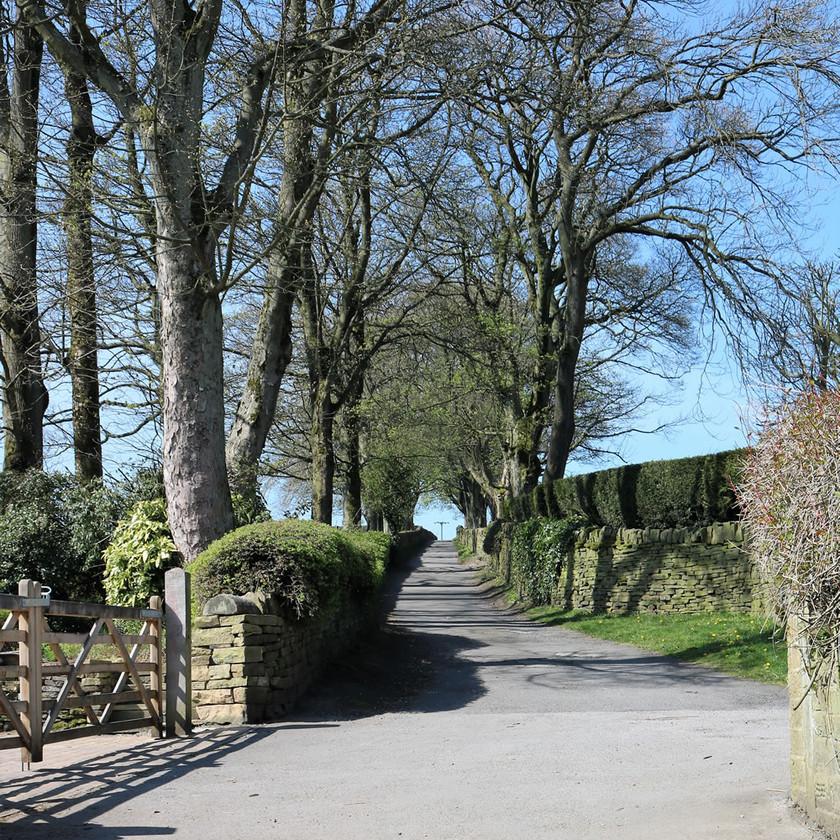 Country lane climb