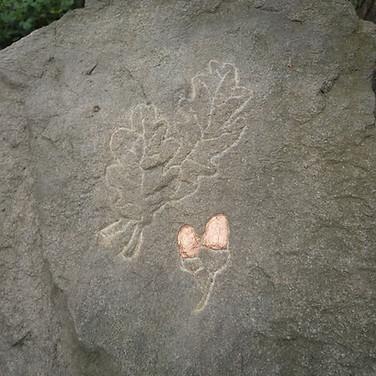 Acorns etched into rocks