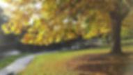 2013-10-21 151.jpg