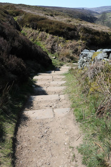 Stone steps down to Bronte falls