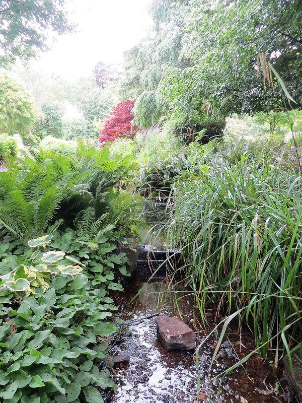 creek bed stream lister park