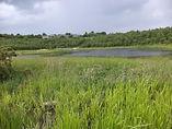 Horton Bank country park Bradford