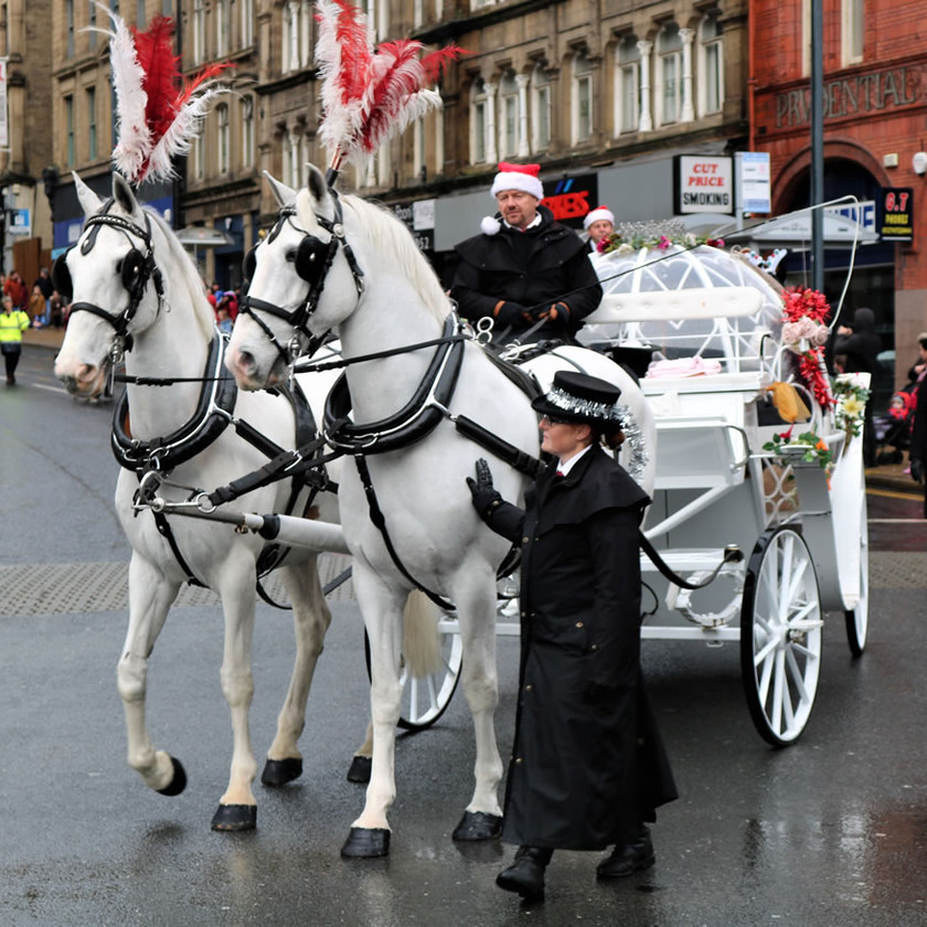 White horses pull Cinderella carriage Bradford 2019