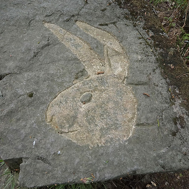 Rabbits head etched into rock