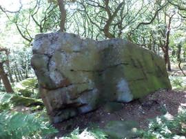 shipley glen large rock.jpg