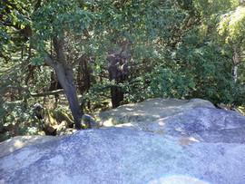 shipley glen rock drop.jpg