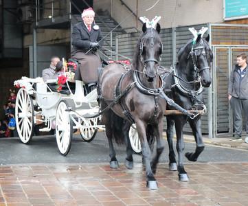 Horse drawn carriage Bradford 2019