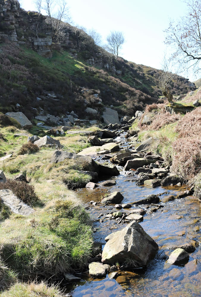 Bronte falls stream South Dean Beck