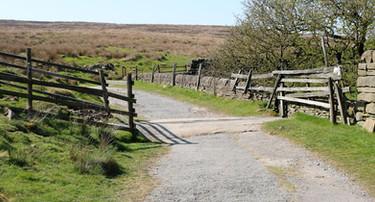 Moor drainage