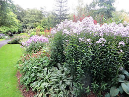 Lister park botanical garden