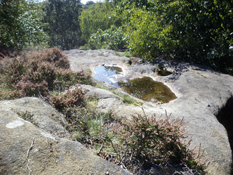 shipley glen rock pool.jpg