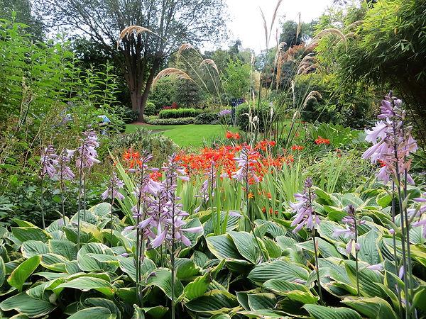 Hosta bed sensory garden Bradford