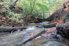 Judy woods waterfall.jpg