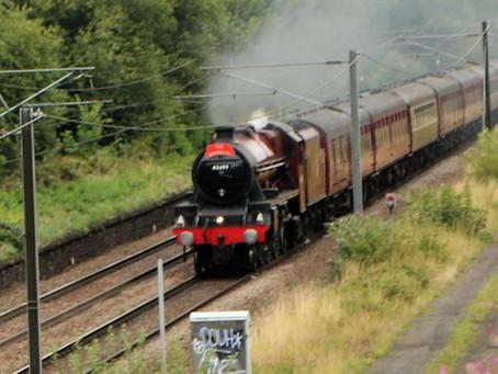 The Waverley Steamer passes through Shipley  Aug 2019.