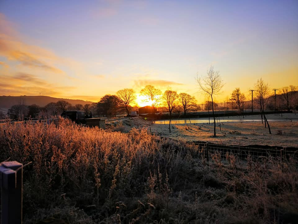 Sunrise and frost