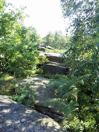 shipley glen rock steps.jpg