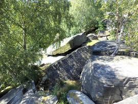 shipley glen rocks 1.jpg