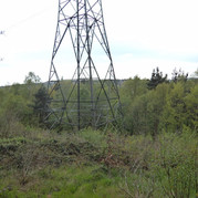 Electricity pylon bck woods thackley