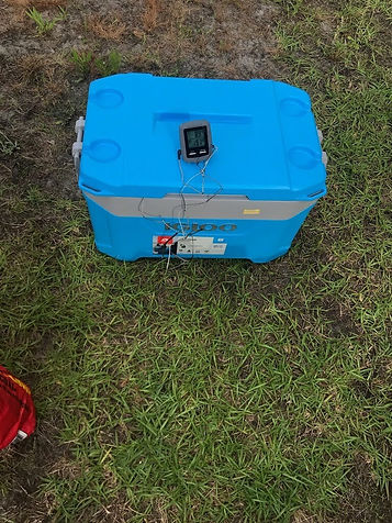 Igloo Latitude Cooler with a Brisket Resting