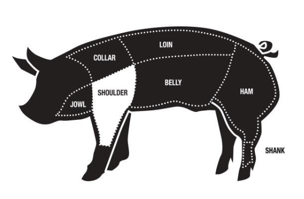 Butchers Diagram of a Pork Shoulder