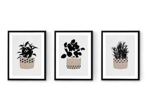 סט 3 הדפסי תבלינים פטרן שחור אפור