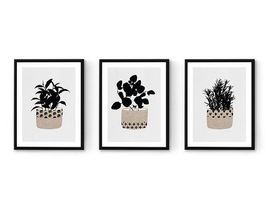 3 הדפסים בוטני תבלינים פטרן שחור אפור