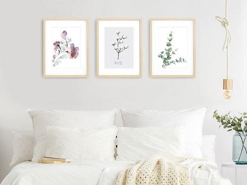 סט 3 הדפסים בוטניים עלה כותנה אקליפטוס ופרחים