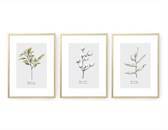 3 הדפסים בוטניים רקע אפור