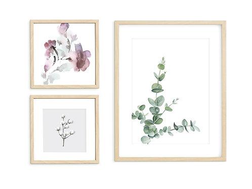 סט 3 הדפסים כותנה אקליפטוס ופרחים בגדלים שונים