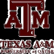 Texas A&M logo 2_InPixio.png