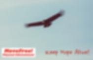 スクリーンショット 2020-03-31 14.46.03.png